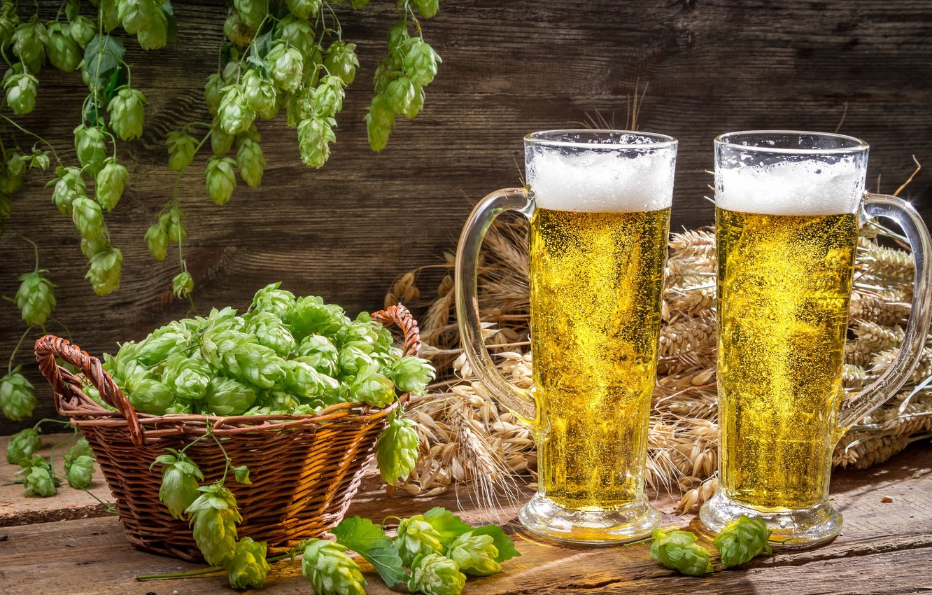 Wallpaper Foam Beer Mugs Basket Light Hops Images For Desktop