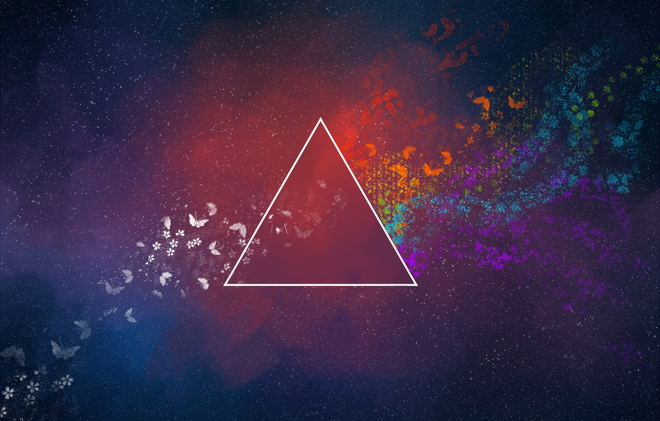 Photo wallpaper butterfly, abstraction, triangle