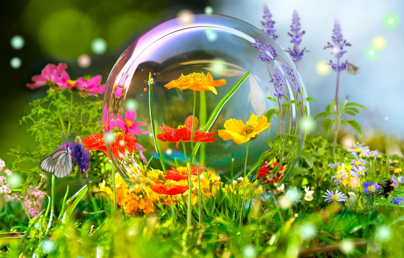 Photo wallpaper flowers, nature, reflection, butterfly, ball, meadow, bubble