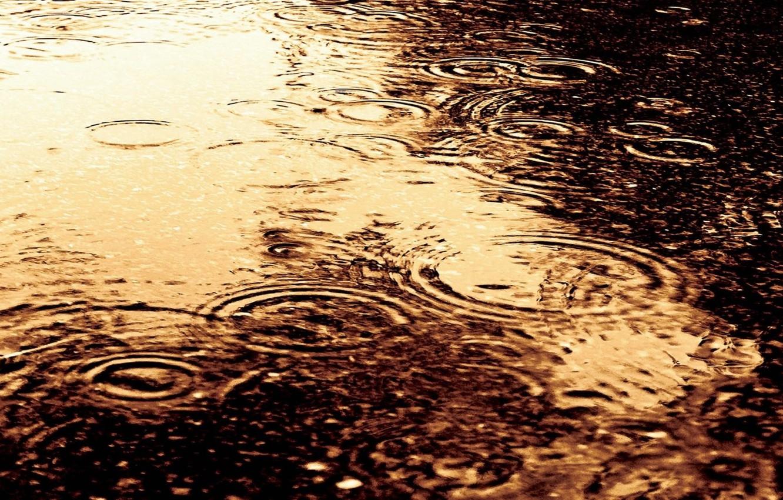 Photo wallpaper water, drops, circles, rain, divorce