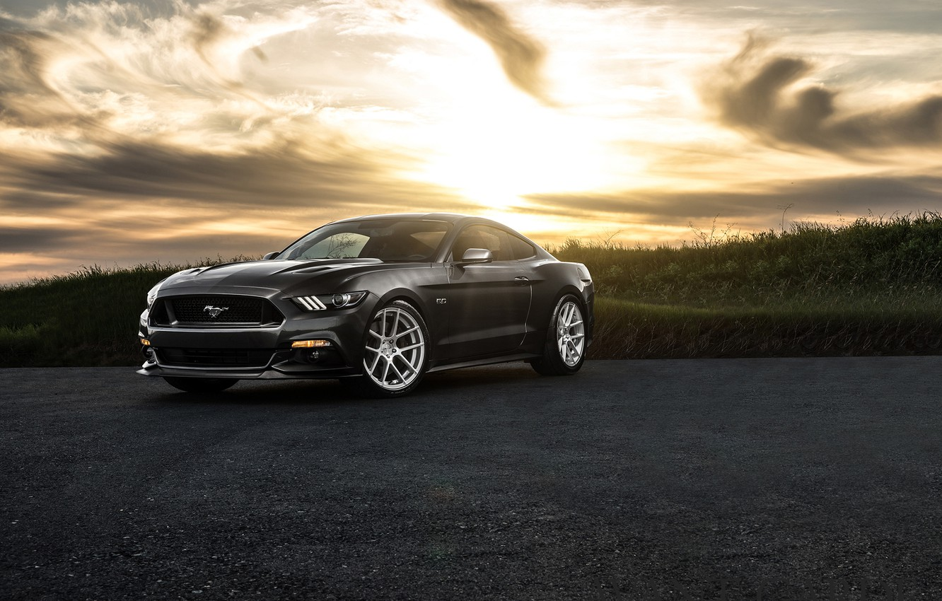 Photo wallpaper Mustang, Ford, Muscle, Car, Front, Sunset, Wheels, Before, 2015, Garde