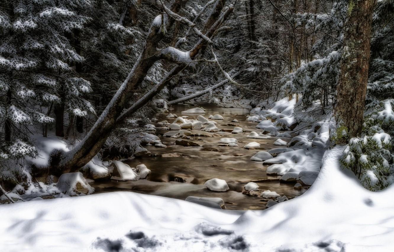 Photo wallpaper snow, trees, stream, New Hampshire