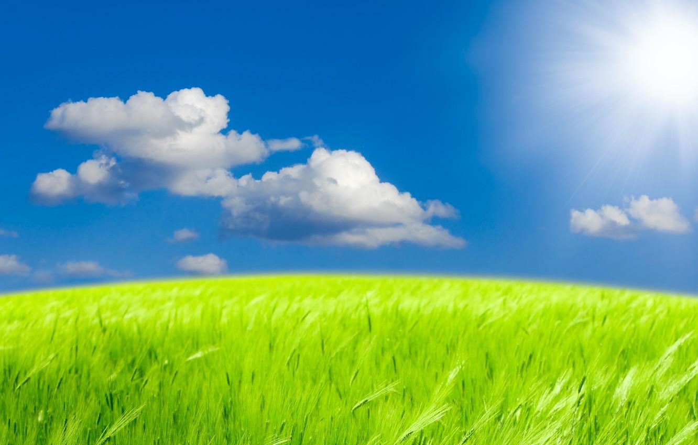 Photo wallpaper the sky, grass, the sun, clouds, landscape, nature, grass, sky, landscape, nature, clouds, green field, …