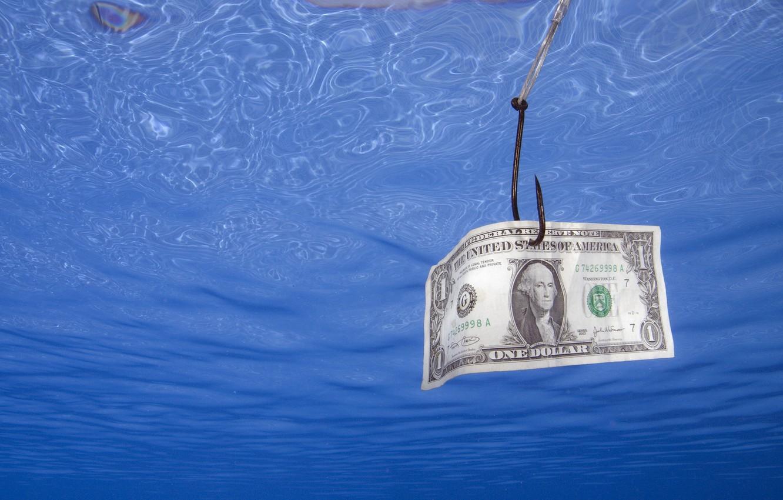 Photo wallpaper dollar, Money, fishing