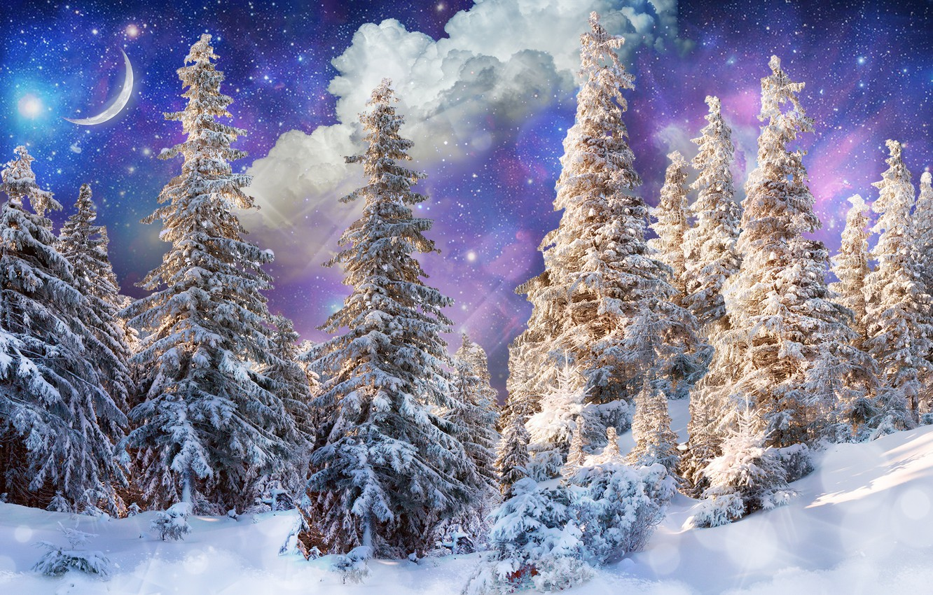 Photo wallpaper winter, forest, the sun, stars, clouds, snow, trees, glare, photoshop, a month, fantasy