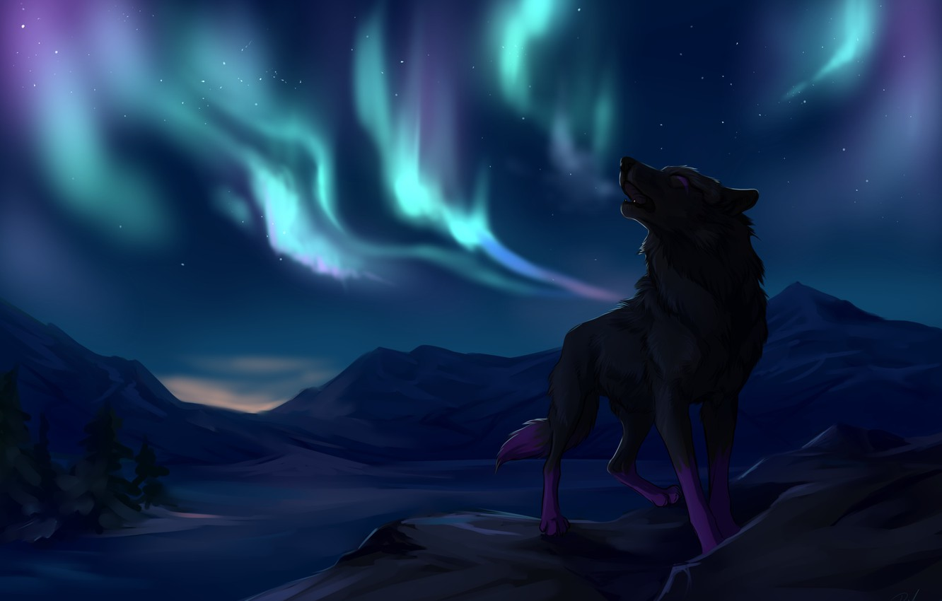 Photo wallpaper trees, mountains, wolf, stars, Northern lights