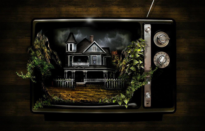 Photo wallpaper house, plants, strange, TV