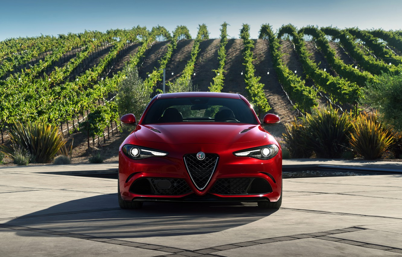 Photo wallpaper Alfa Romeo, Alfa Romeo, Four-leaf clover, Giulia, Julia