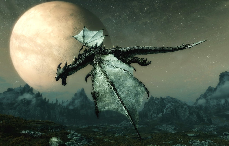 Photo wallpaper dragon, Skyrim, TES