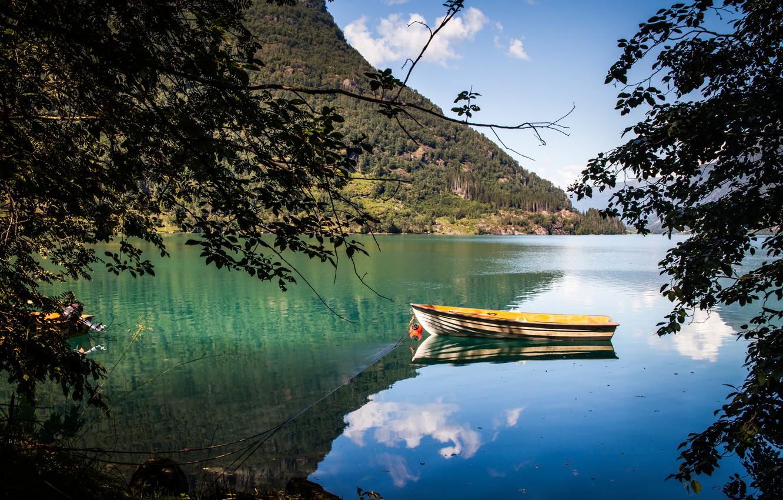 Photo wallpaper lake, branch, boat, pond, photo, photographer, Andrés Nieto Porras
