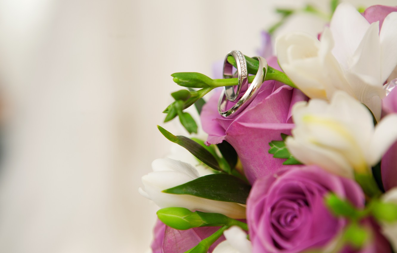Photo wallpaper flowers, ring, buds