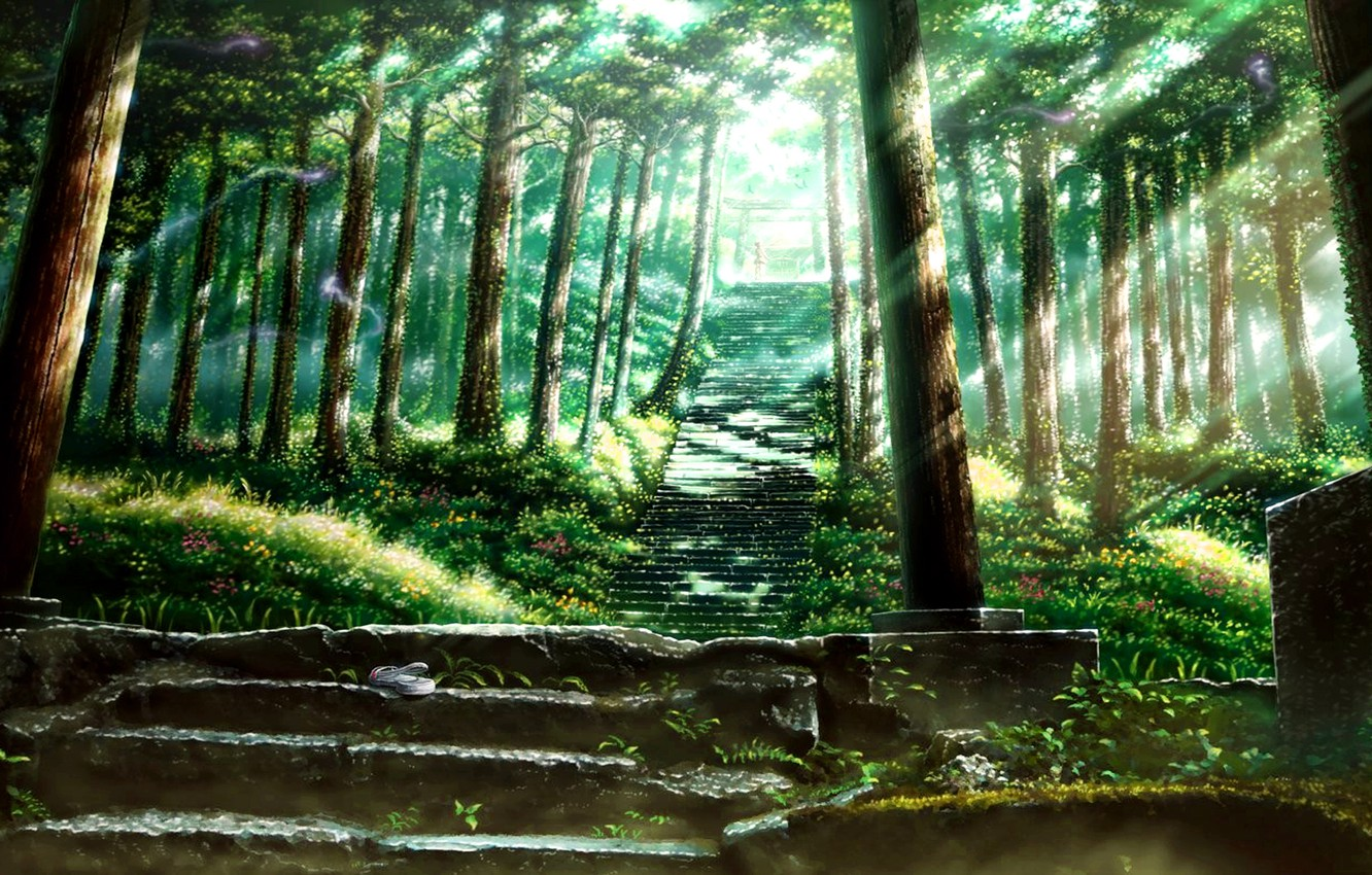 Photo wallpaper Greens, Girl, Forest, Ladder, The Rays Of The Sun, The mystery