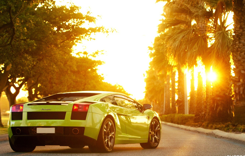 Photo wallpaper The sun, Machine, Palm trees, Gallardo, Green, Voitur, Sun, Lamborghini, Gallardo, Sportcar