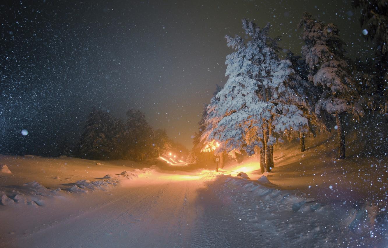 Photo wallpaper winter, road, snow, night, tree, lighting, lights, snowfall