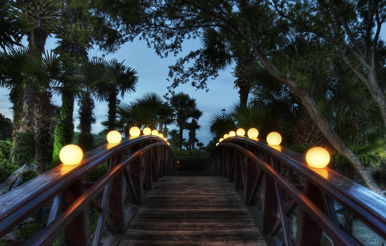 Photo wallpaper bridge, palm trees, the evening, lights