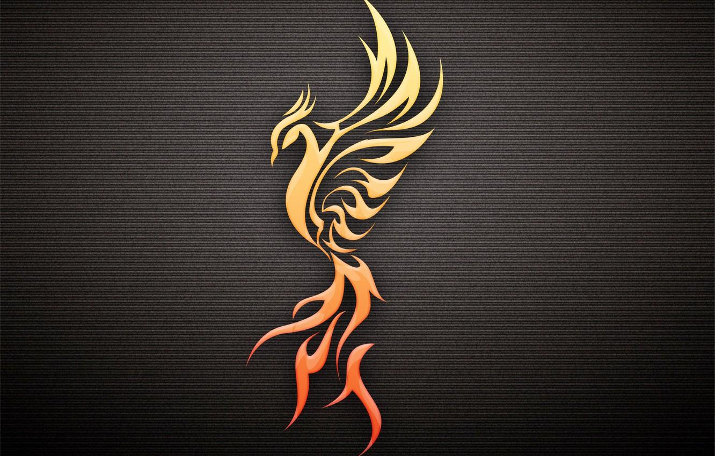 Photo wallpaper bird, profile, Phoenix, the dark background