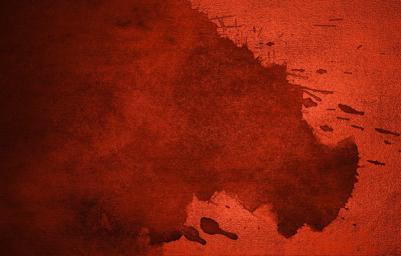 Photo wallpaper macro, red, paint
