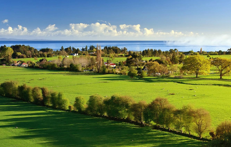 Photo wallpaper sea, greens, the sky, grass, water, clouds, light, trees, landscape, nature, home, shadow, light, grass, …
