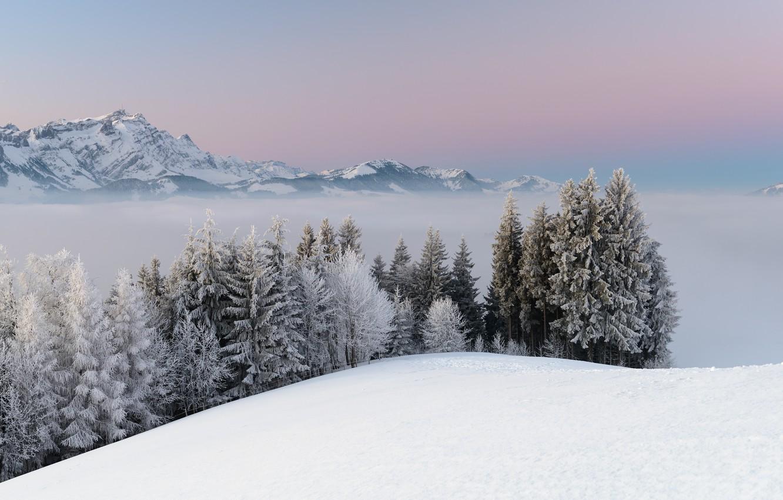 Photo wallpaper winter, snow, trees, landscape, mountains, nature, fog