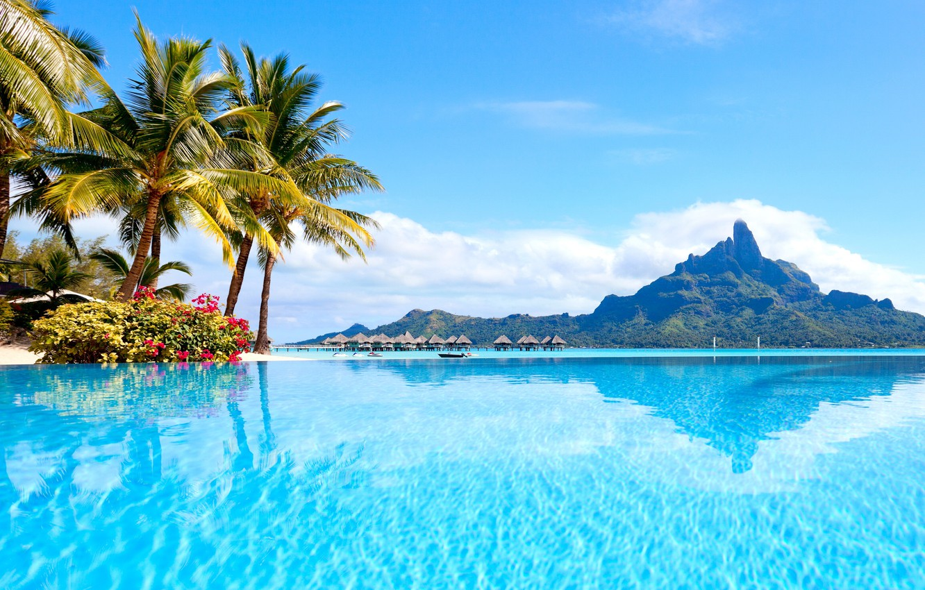 Tropical Wallpaper Wallpapers Latest