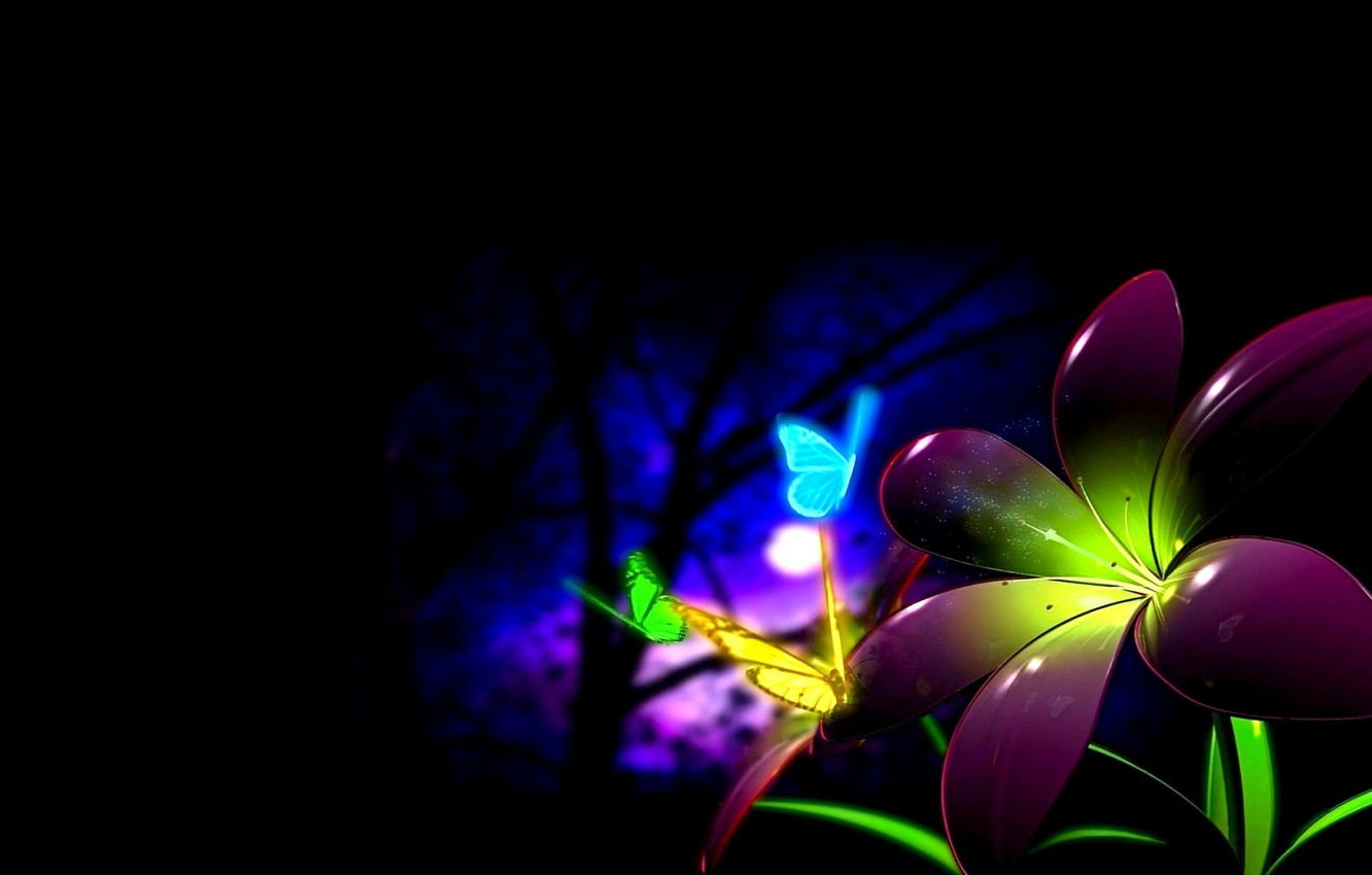 Wallpaper Night The Moon Black Background Colorful Flower Butterfly Images For Desktop Section Rendering Download
