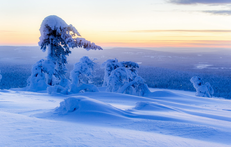 Photo wallpaper winter, snow, trees, panorama, the snow, Finland, Finland, Lapland, Lapland, Ylläs, Ylläs