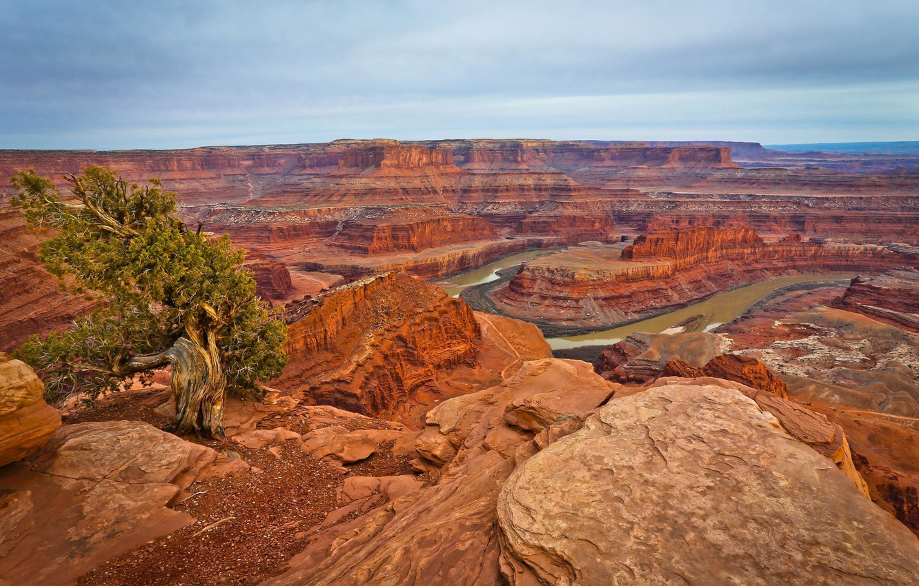 Photo wallpaper the sky, clouds, mountains, river, tree, rocks, canyon