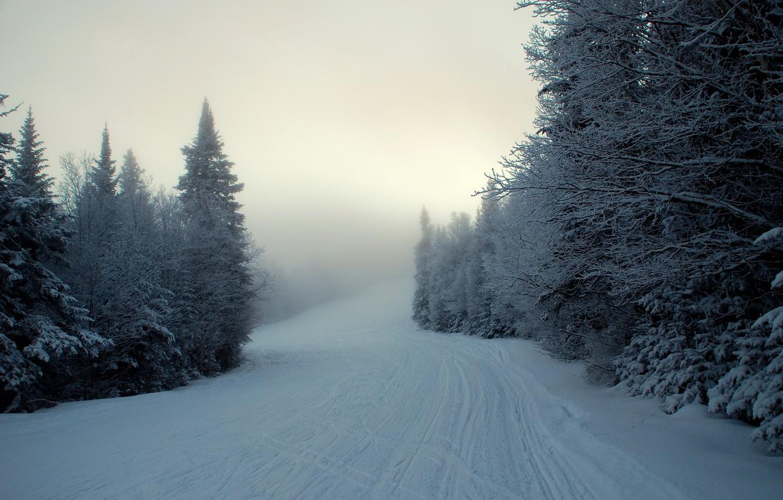 Photo wallpaper winter, snow, fog, ate