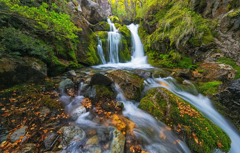 Photo wallpaper forest, waterfall, cascade, Argentina, Argentina, Patagonia, Patagonia, Santa Cruz, Santa Cruz Province, Lago Argentino, Lago …