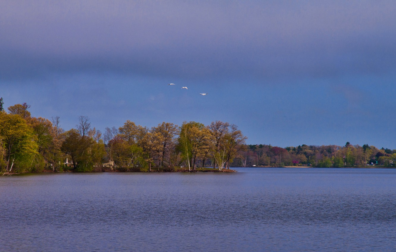 Photo wallpaper autumn, the sky, clouds, trees, birds, lake