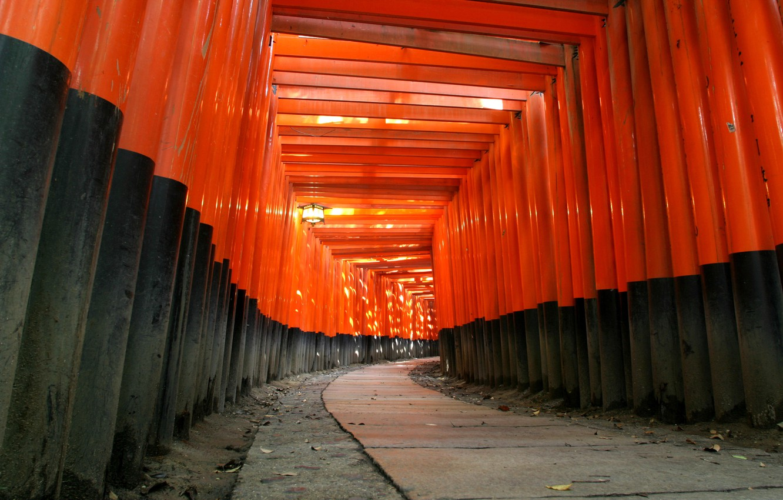 Photo wallpaper red, tree, black, Japan, temple, Shinto