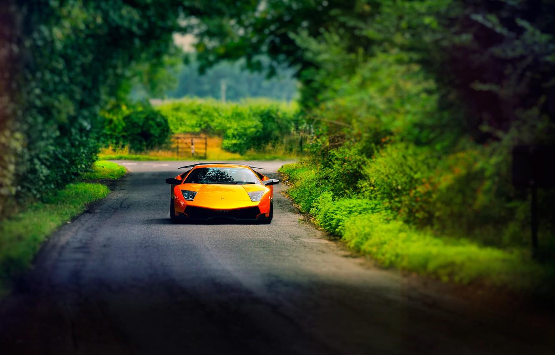 Photo wallpaper road, summer, Lamborghini, Murcielago