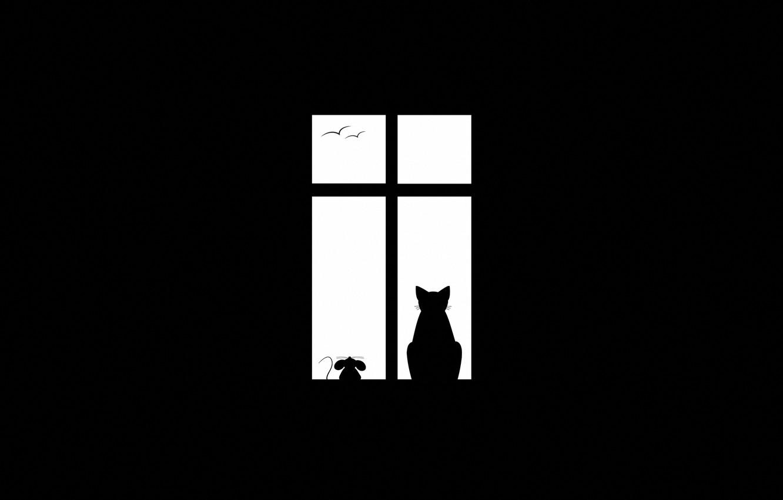 Photo wallpaper cat, birds, minimalism, mouse, window, friends, Friendship