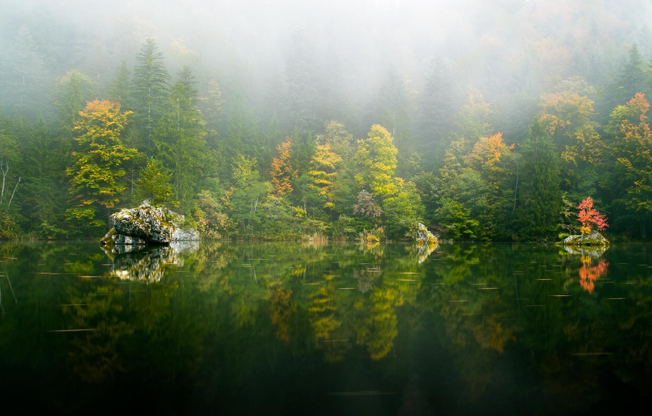 Photo wallpaper autumn, forest, trees, nature, lake, reflection, haze