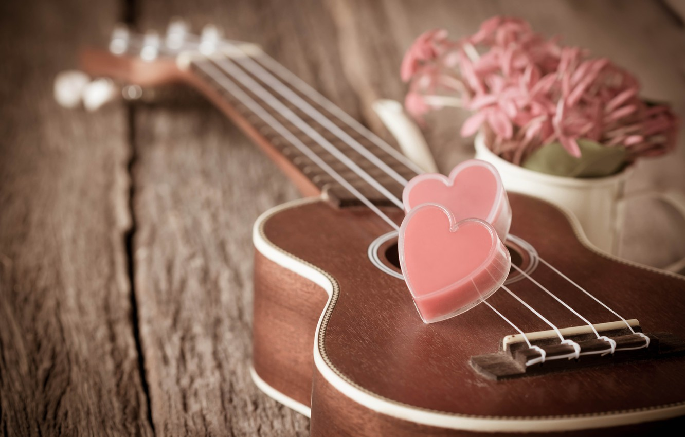 Wallpaper Flowers Heart Guitar Love Vintage Heart