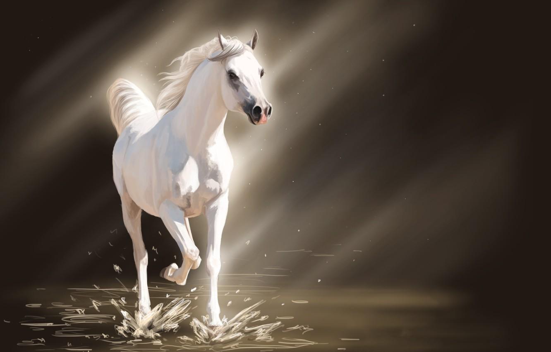 Photo wallpaper water, light, squirt, horse, horse, art, white, the sun's rays