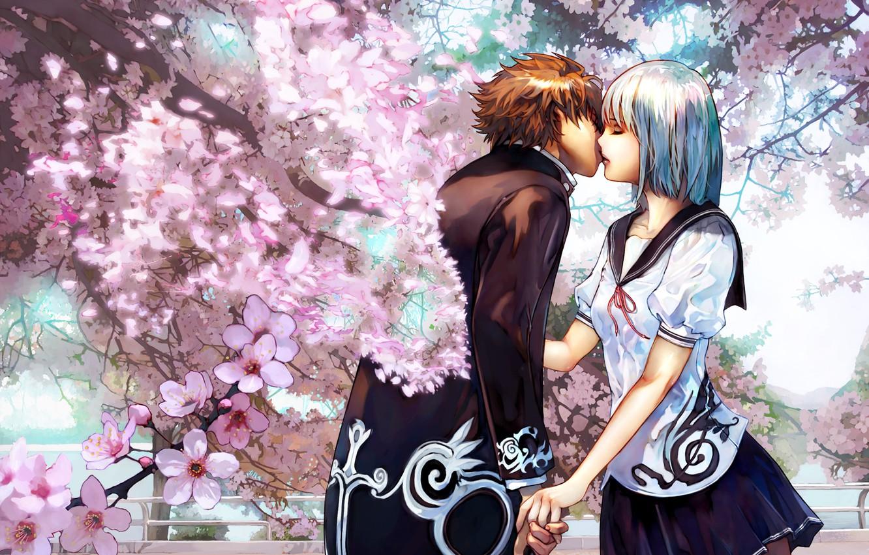 Photo wallpaper kiss, pair, lovers, cherry blossoms, Cherry kiss