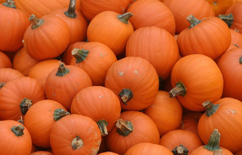 Photo wallpaper orange, pumpkin, Pumpkins
