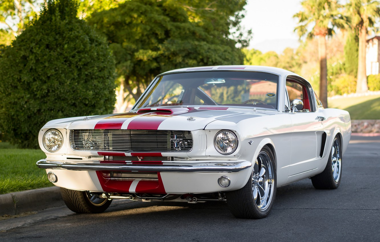 Photo wallpaper Mustang, Ford, classic, the front