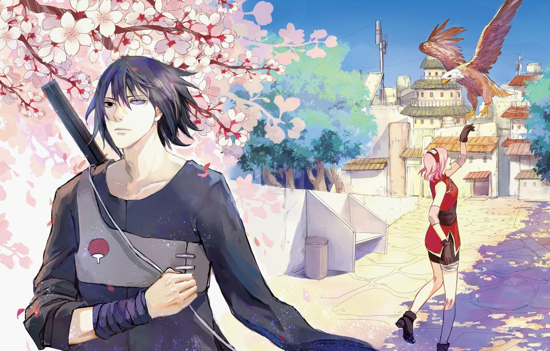 Wallpaper Naruto Sasuke Unbridled Download Haruno Sakura Bird