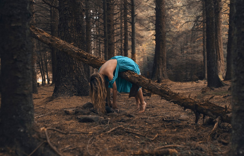 Photo wallpaper forest, girl, dress, Rosie Hardy, Wait here