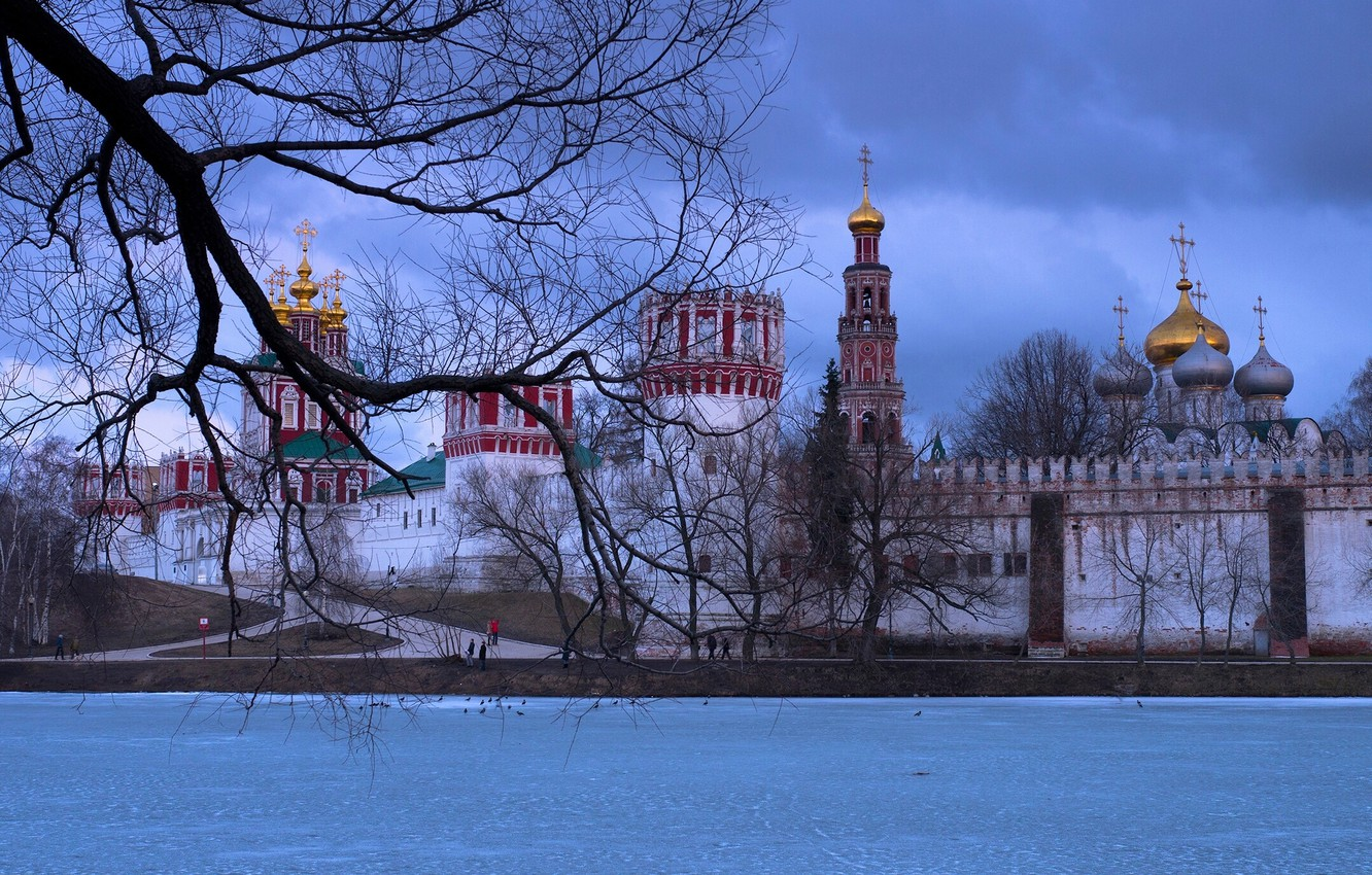 Photo wallpaper winter, branches, river, tree, Moscow, Russia, the monastery, The Moscow river, Novodevichy convent