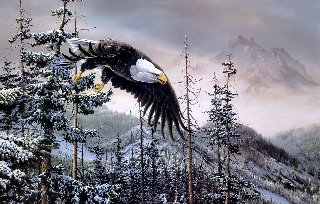 Photo wallpaper winter, forest, mountains, birds, eagle, spruce, painting, bald eagle, Heaven & Earth, bald eagle, Christopher …
