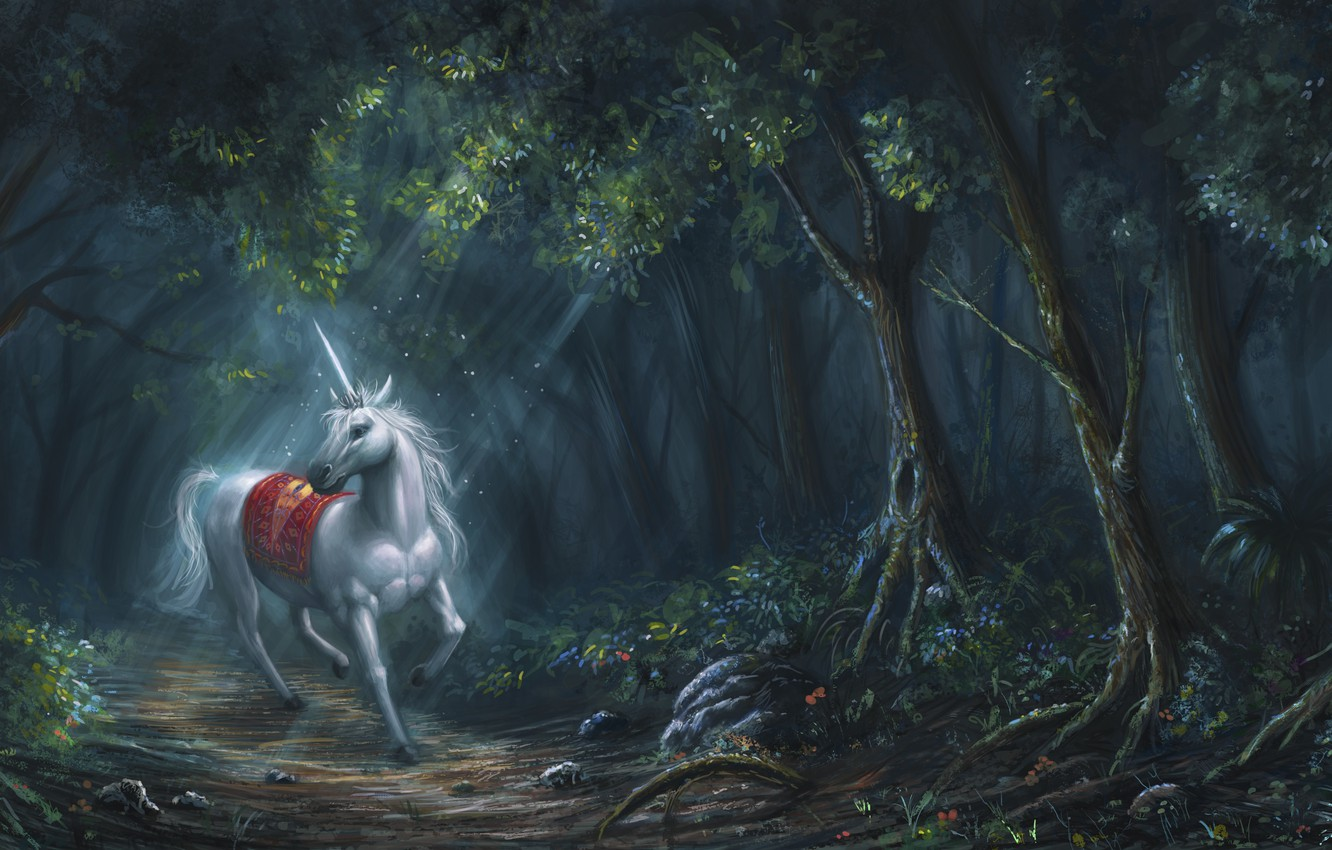 Wallpaper Forest White Horse Fantasy Art Unicorn Horn Images For Desktop Section Fantastika Download