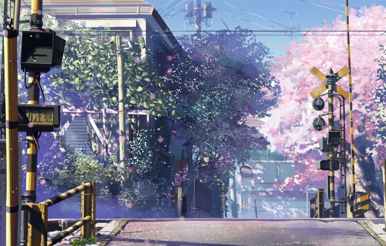 Photo wallpaper Sakura, signs, 5 centimeters per second, W/d to move, Makoto Xingkai