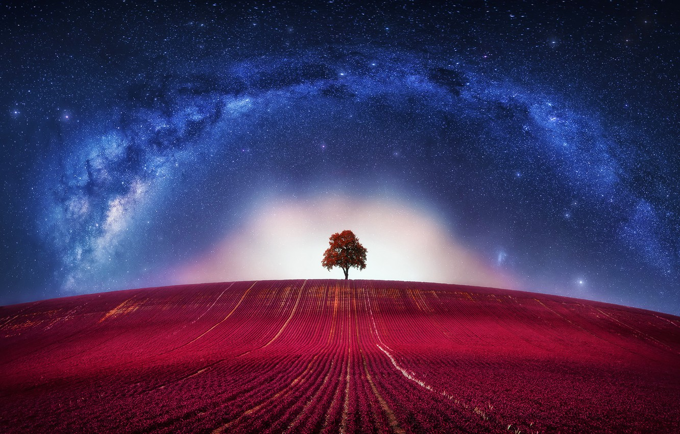 Photo wallpaper Fantasy, Avatar, Clouds, Loneliness, Horizon, Tree, Galaxy, Lone, Way, Milky, Lonely