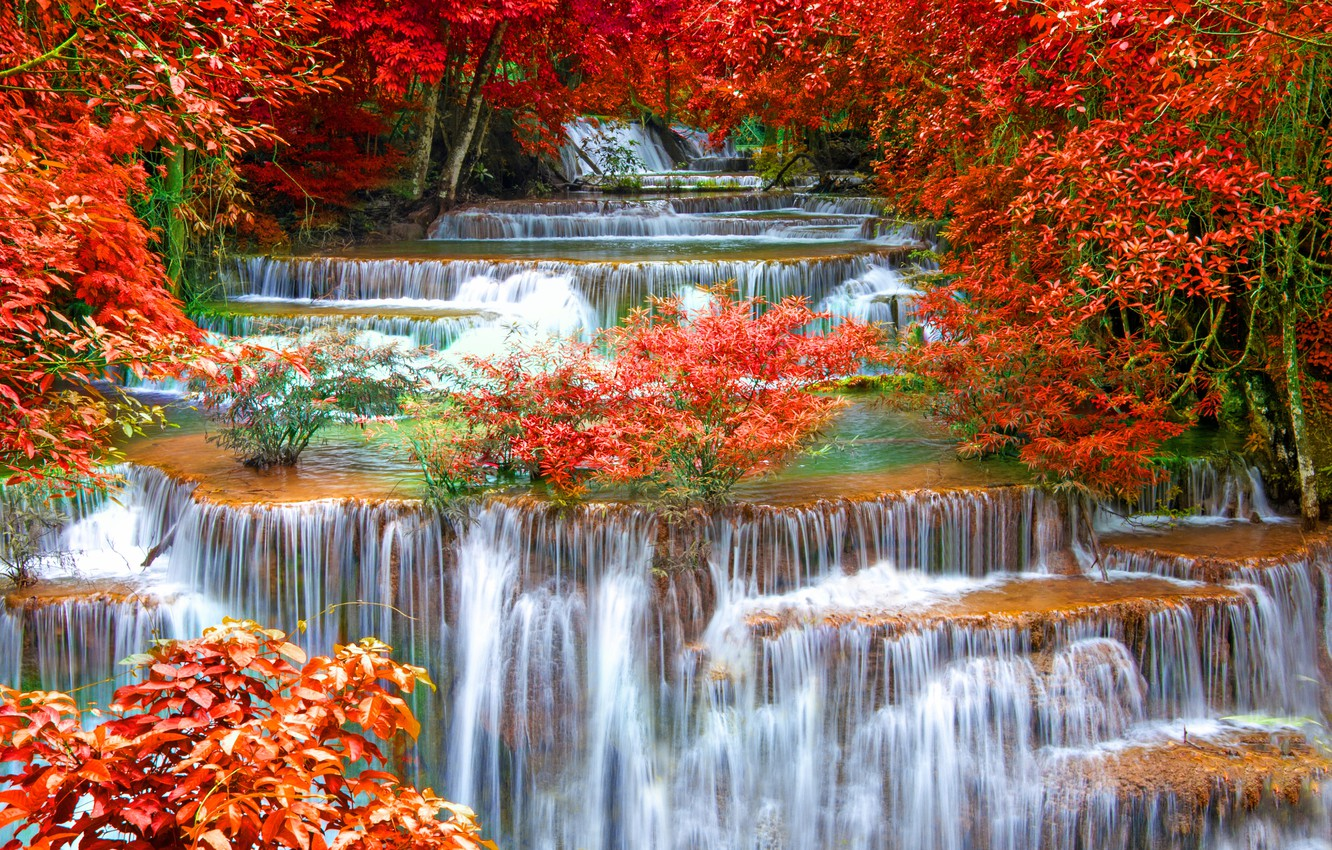 Photo wallpaper autumn, forest, landscape, waterfall, nature, water, autumn, waterfall