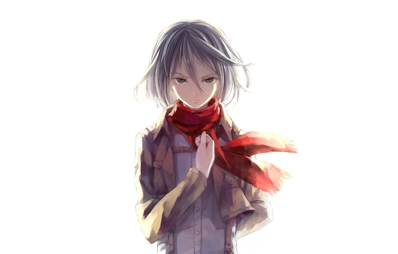 Photo wallpaper white background, military uniform, fan art, Shingeki no Kyojin, Mikasa Ackerman, red scarf, The Invasion …