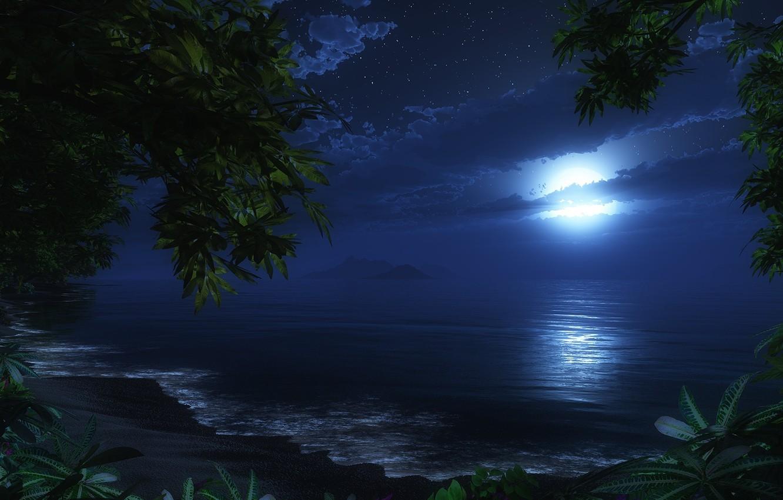 Photo wallpaper beach, night, the moon, sea. romance