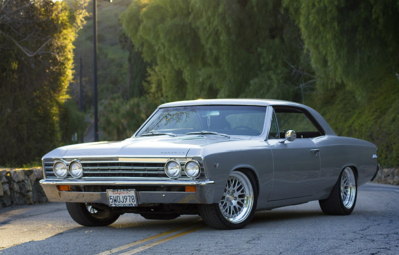 Photo wallpaper road, forest, grey, coupe, Chevrolet, Chevrolet, side view, grey, coupe, 1967, Chevelle, Malibu, Chevelle, Malibu